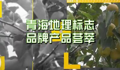 vwin德赢体育省地理标志品牌产品宣传片