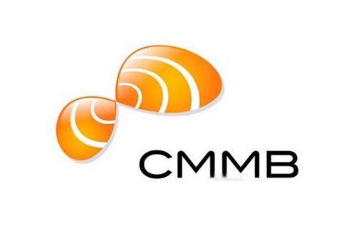 CMMB(图1)